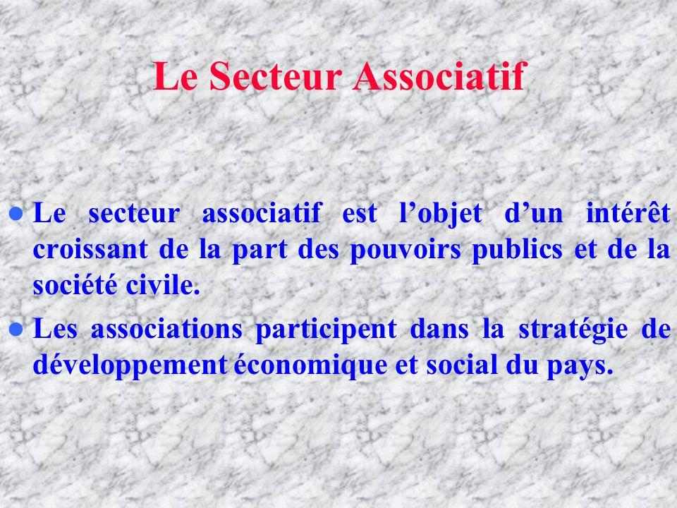 LE SECTEUR ASSOCIATIF Le Secteur Associatif Le secteur associatif est lobjet dun intérêt croissant de la part des pouvoirs publics et de la société civile.