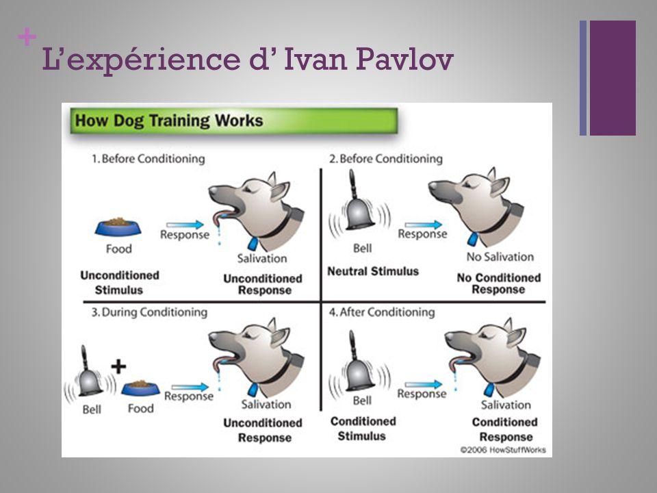 + Lexpérience d Ivan Pavlov