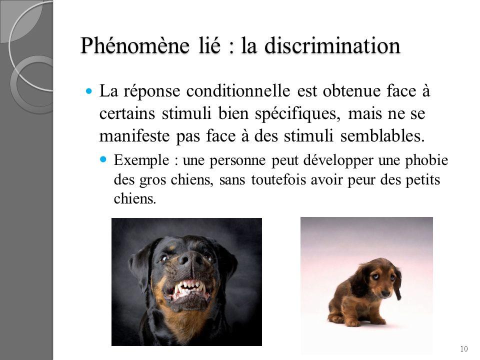 Phénomène lié : la discrimination La réponse conditionnelle est obtenue face à certains stimuli bien spécifiques, mais ne se manifeste pas face à des