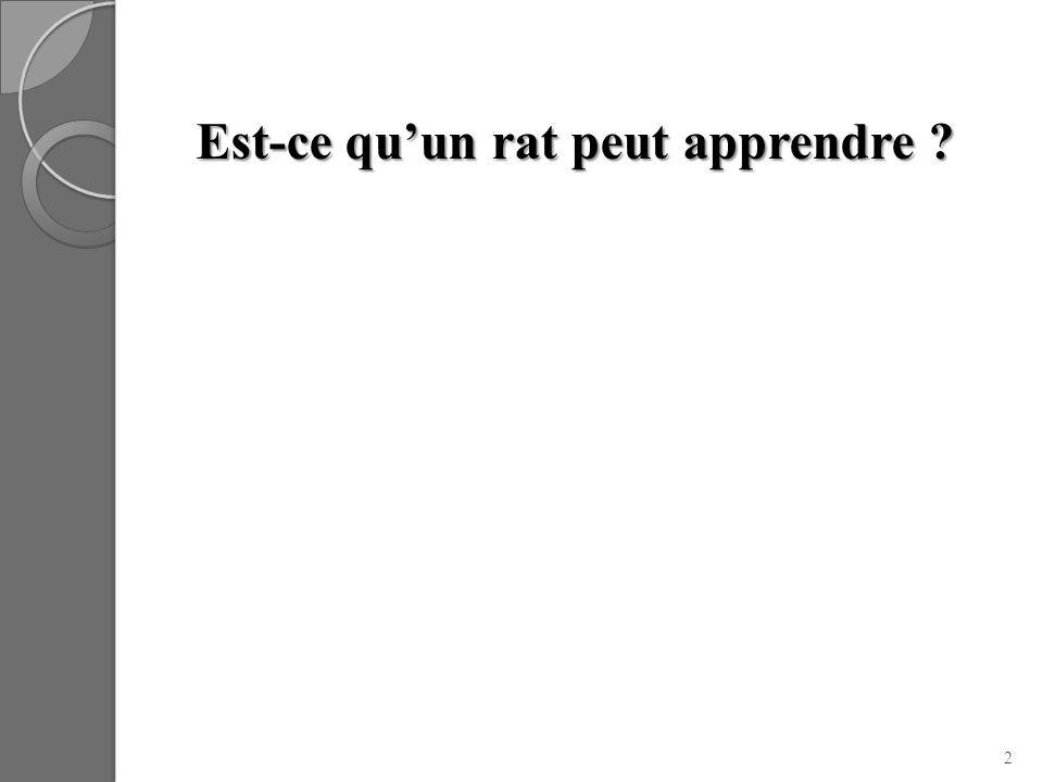 Est-ce quun rat peut apprendre ? 2