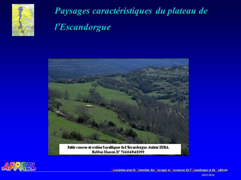 Association pour la Protection des Paysages et Ressources de l Escandorgue et du Lodévois 18/05/2014 18/05/2014 Paysages caractéristiques du plateau de l Escandorgue