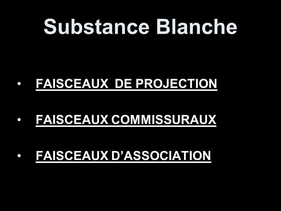 FAISCEAUX DE PROJECTION FAISCEAUX CORTICO-SPINAL ET CORTICO-NUCLÉAIRE FAISCEAUX EXTRA-PYRAMIDAUX.