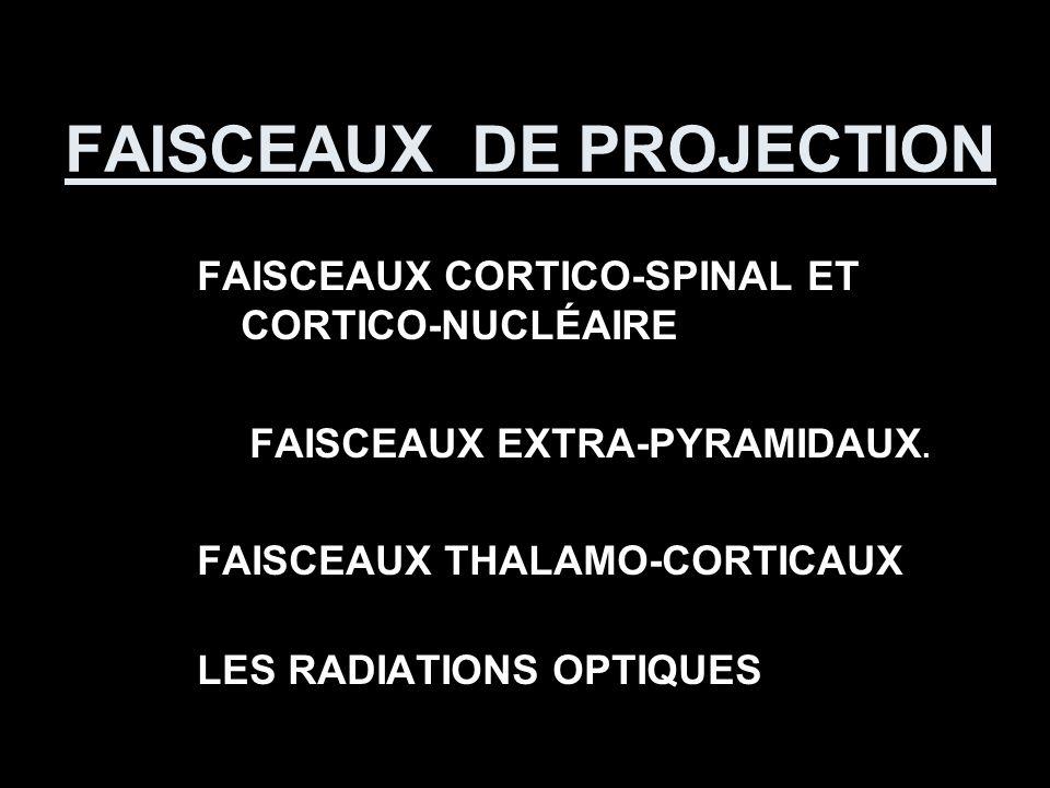 FAISCEAUX DE PROJECTION FAISCEAUX CORTICO-SPINAL ET CORTICO-NUCLÉAIRE FAISCEAUX EXTRA-PYRAMIDAUX. FAISCEAUX THALAMO-CORTICAUX LES RADIATIONS OPTIQUES