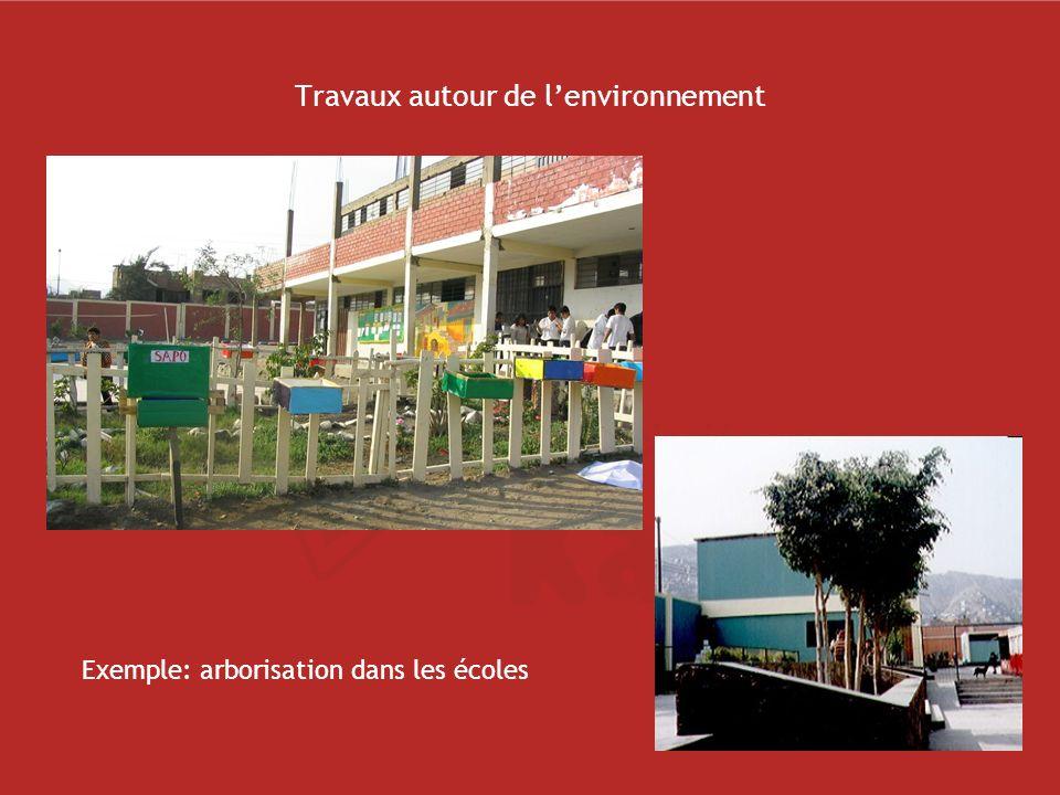 Travaux autour de lenvironnement Exemple: arborisation dans les écoles