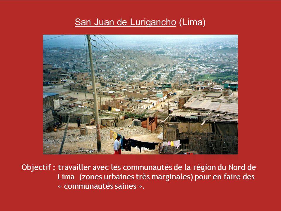Objectif : travailler avec les communautés de la région du Nord de Lima (zones urbaines très marginales) pour en faire des « communautés saines ».