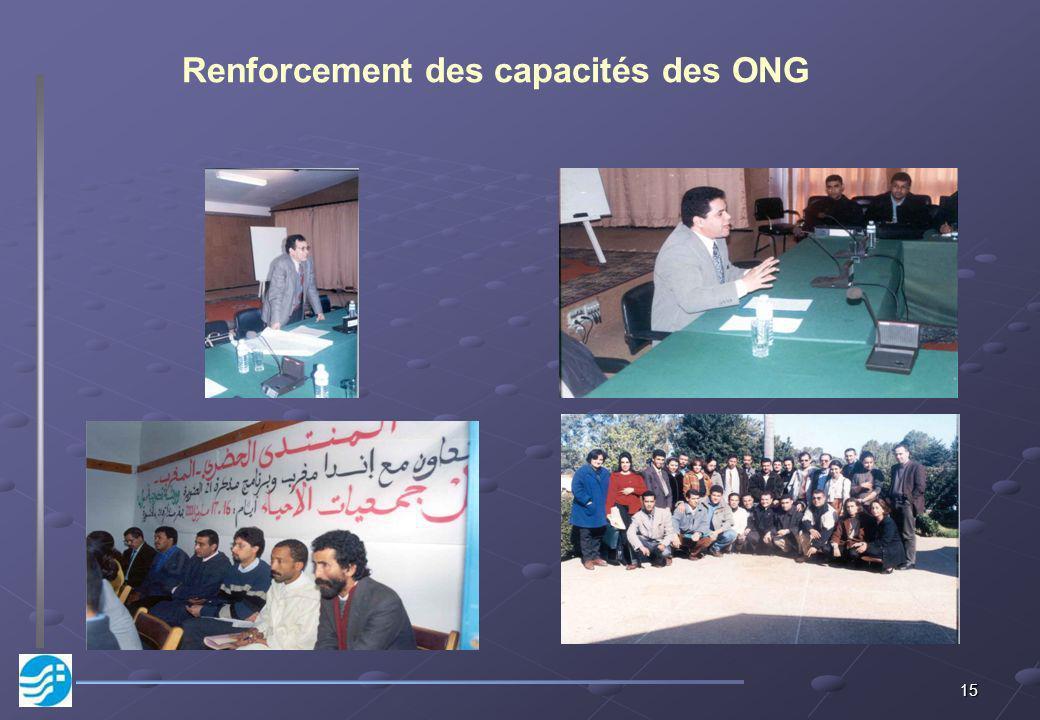 15 Renforcement des capacités des ONG