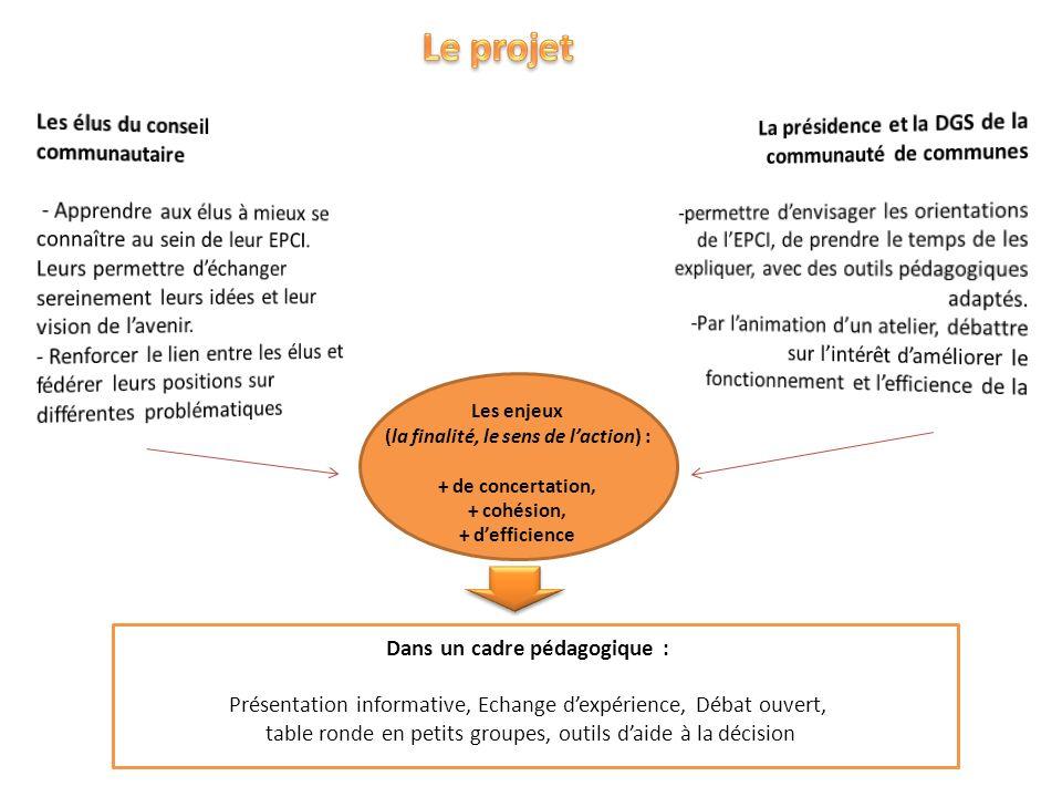 Les enjeux (la finalité, le sens de laction) : + de concertation, + cohésion, + defficience Dans un cadre pédagogique : Présentation informative, Echa