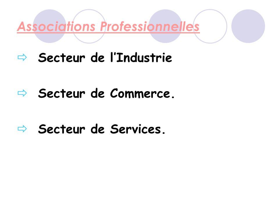 Associations Professionnelles Secteur de lIndustrie Secteur de Commerce. Secteur de Services.