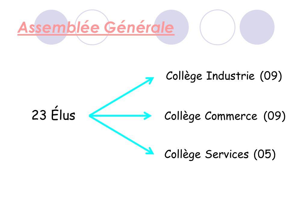 Assemblée Générale 23 Élus Collège Industrie (09) Collège Commerce (09) Collège Services (05)