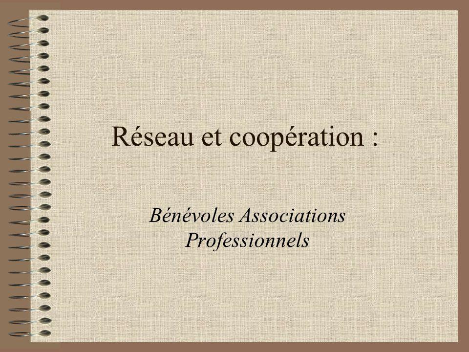 Réseau et coopération : Bénévoles Associations Professionnels