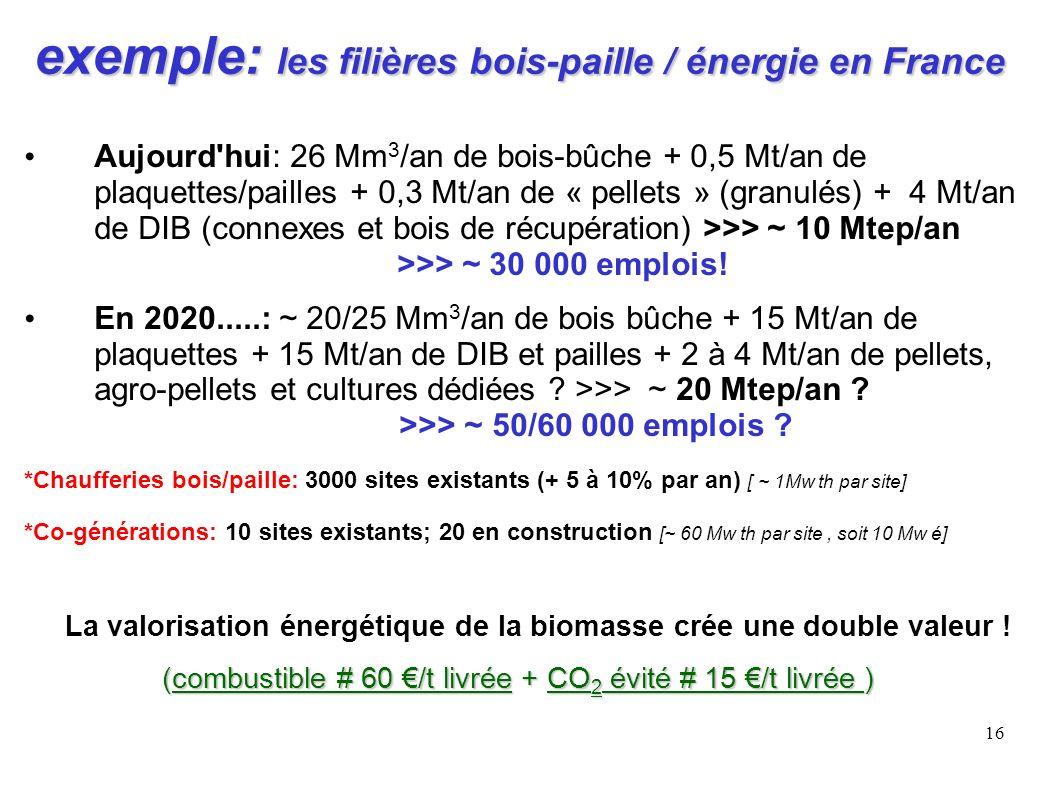 16 exemple: les filières bois-paille / énergie en France Aujourd'hui: 26 Mm 3 /an de bois-bûche + 0,5 Mt/an de plaquettes/pailles + 0,3 Mt/an de « pel