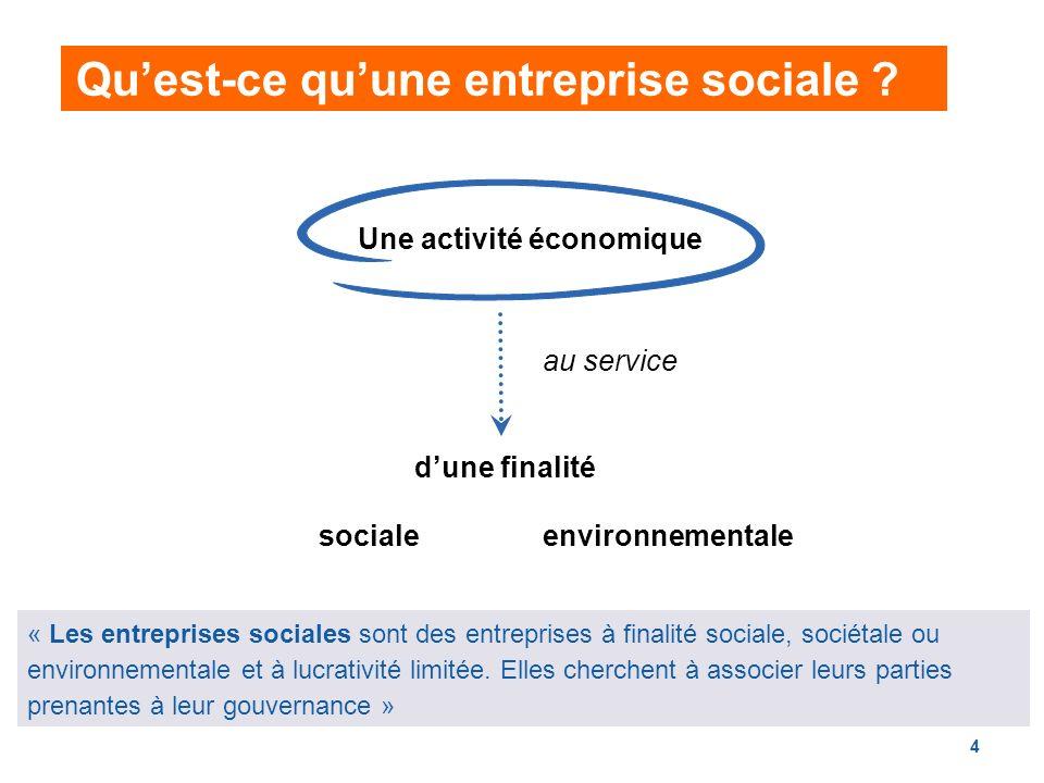 4 « Les entreprises sociales sont des entreprises à finalité sociale, sociétale ou environnementale et à lucrativité limitée.