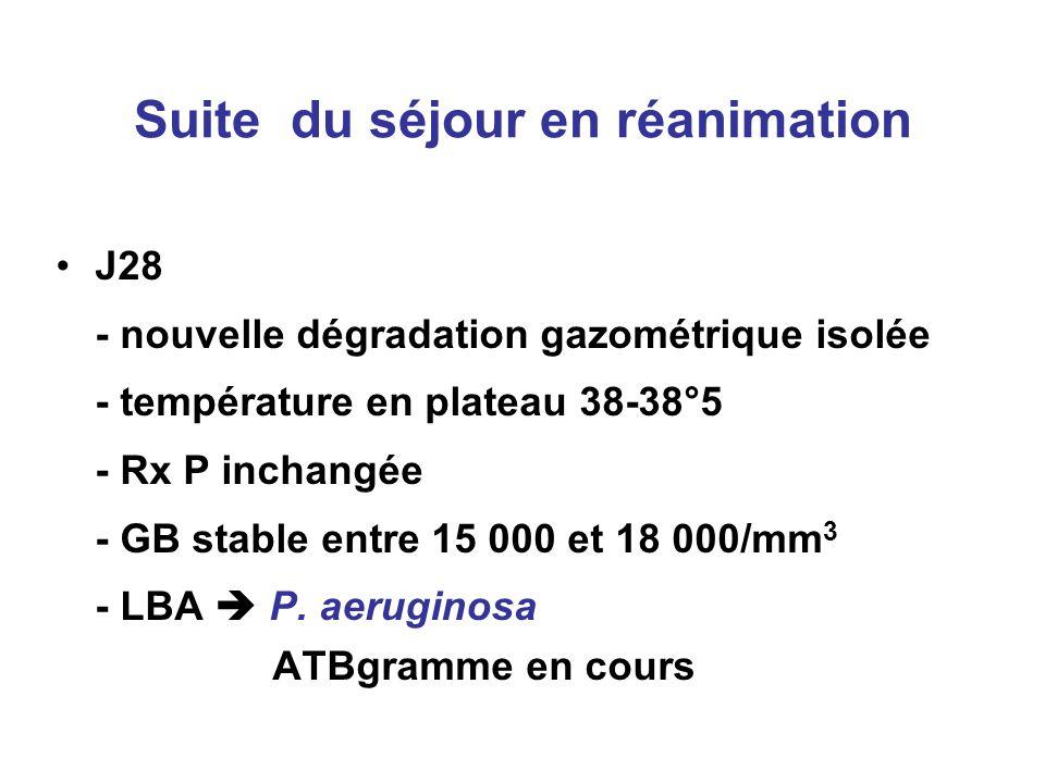 Suite du séjour en réanimation J28 - nouvelle dégradation gazométrique isolée - température en plateau 38-38°5 - Rx P inchangée - GB stable entre 15 0