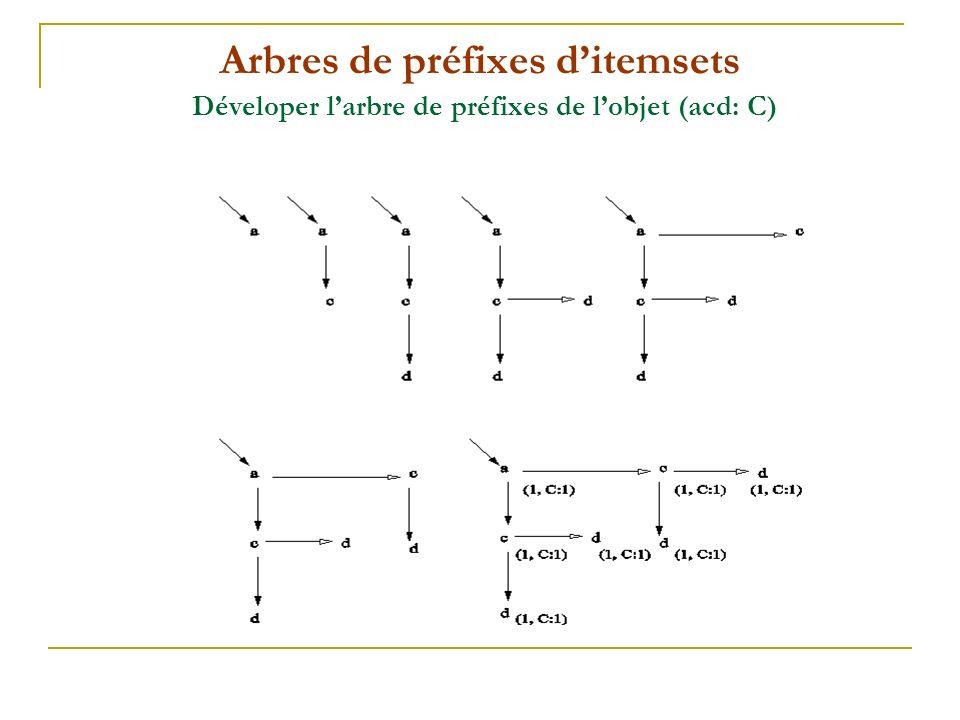 Arbres de préfixes ditemsets Déveloper larbre de préfixes de lobjet (acd: C)