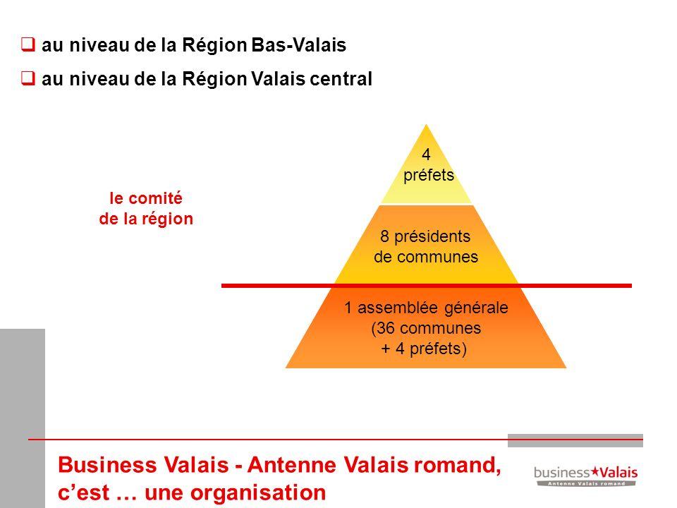 4 préfets 8 présidents de communes 1 assemblée générale (36 communes + 4 préfets) au niveau de la Région Bas-Valais au niveau de la Région Valais cent