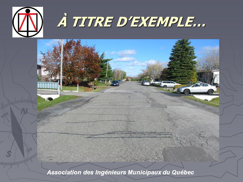 Association des Ingénieurs Municipaux du Québec À TITRE DEXEMPLE… À TITRE DEXEMPLE…