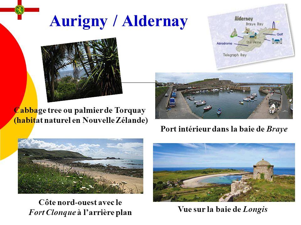 Aurigny / Aldernay Côte nord-ouest avec le Fort Clonque à larrière plan Port intérieur dans la baie de Braye Cabbage tree ou palmier de Torquay (habit