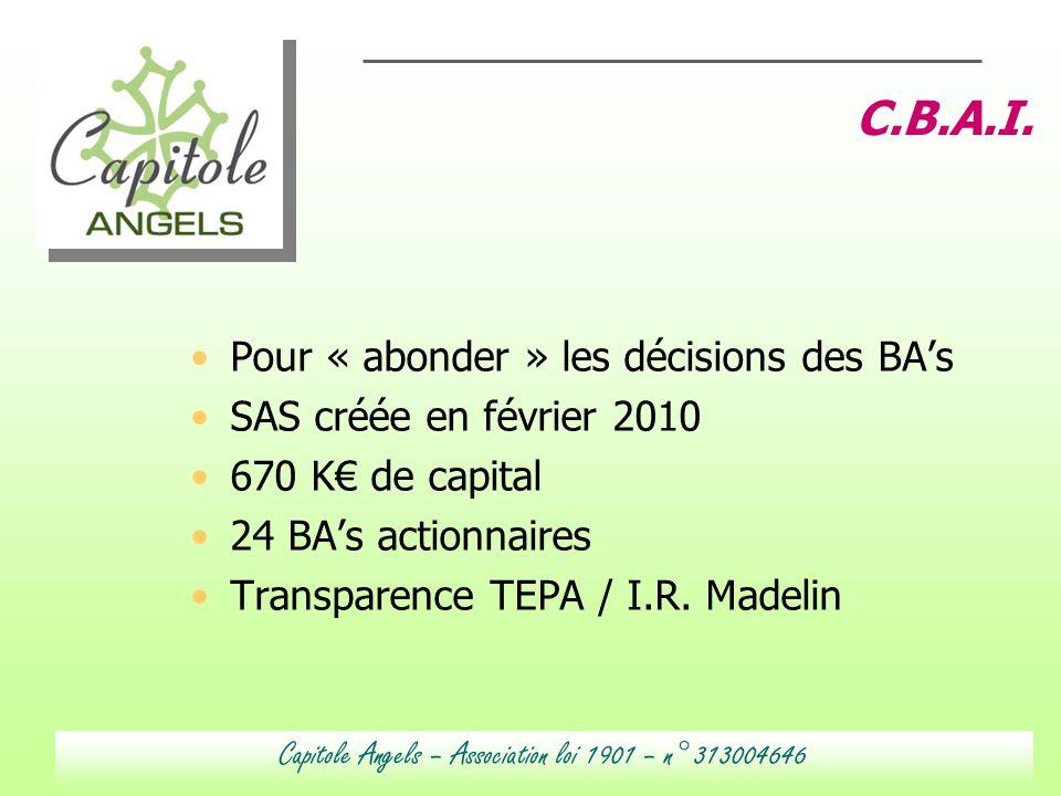 Mars 2007 Sup de Co Toulouse ADL STRATEGIE 06 70 38 66 50 adelatude@wanadoo.fr 8 Pour « abonder » les décisions des BAs SAS créée en février 2010 670