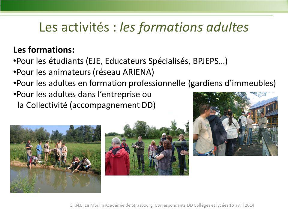 Les activités : les formations adultes Les formations: Pour les étudiants (EJE, Educateurs Spécialisés, BPJEPS…) Pour les animateurs (réseau ARIENA) Pour les adultes en formation professionnelle (gardiens dimmeubles) Pour les adultes dans lentreprise ou la Collectivité (accompagnement DD) C.I.N.E.