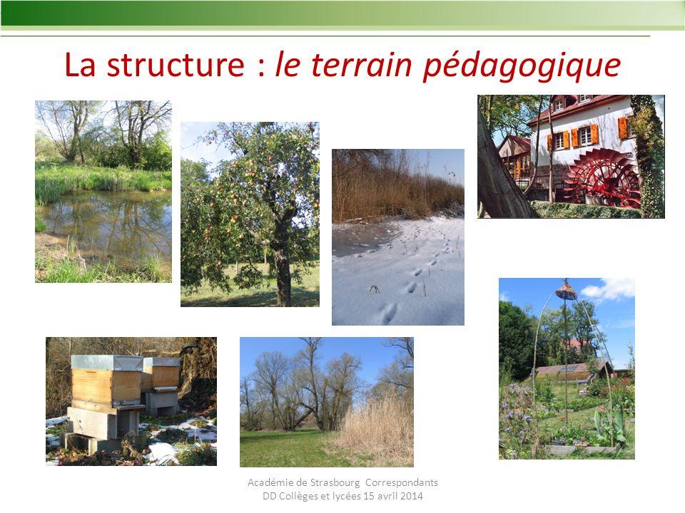 La structure : le terrain pédagogique Académie de Strasbourg Correspondants DD Collèges et lycées 15 avril 2014