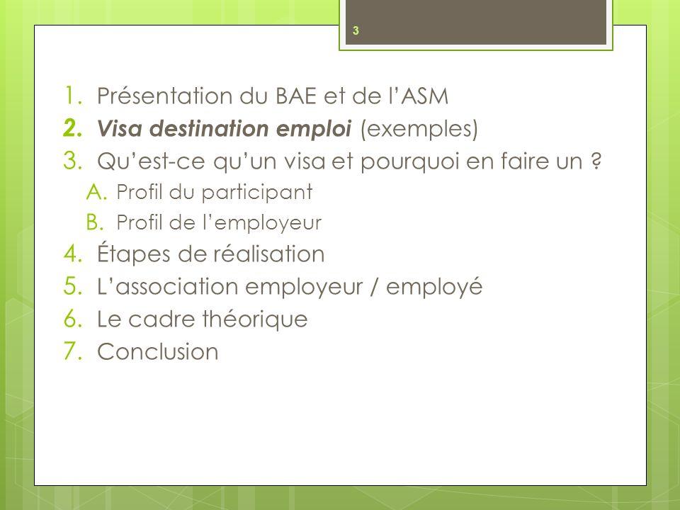 1.Présentation du BAE et de lASM 2. Visa destination emploi (exemples) 3.