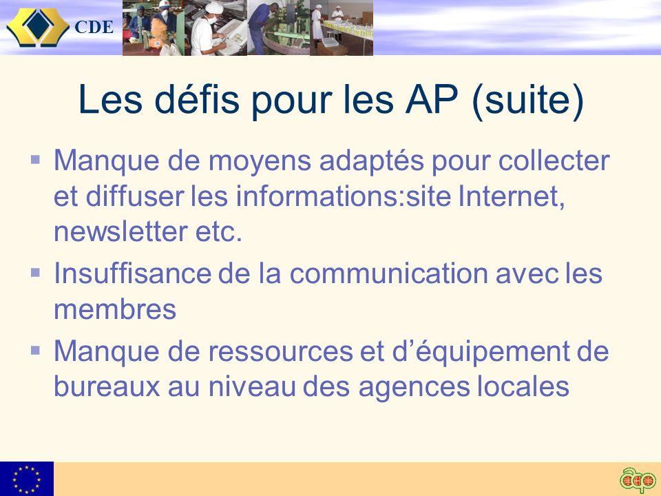 CDE Les défis pour les AP (suite) Manque de moyens adaptés pour collecter et diffuser les informations:site Internet, newsletter etc.