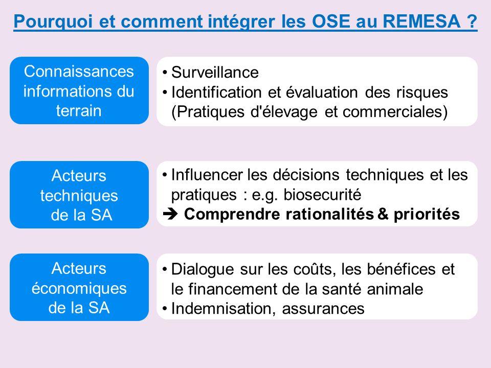 Pourquoi et comment intégrer les OSE au REMESA ? Acteurs techniques de la SA Connaissances informations du terrain Acteurs économiques de la SA Survei