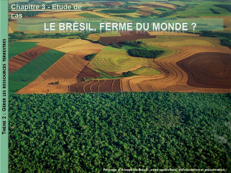 T HÈME 2 : G ÉRER LES RESSOURCES TERRESTRES Chapitre 3 - Etude de cas Paysage dAmazonie Brésil : entre agriculture, déforestation et préservation.