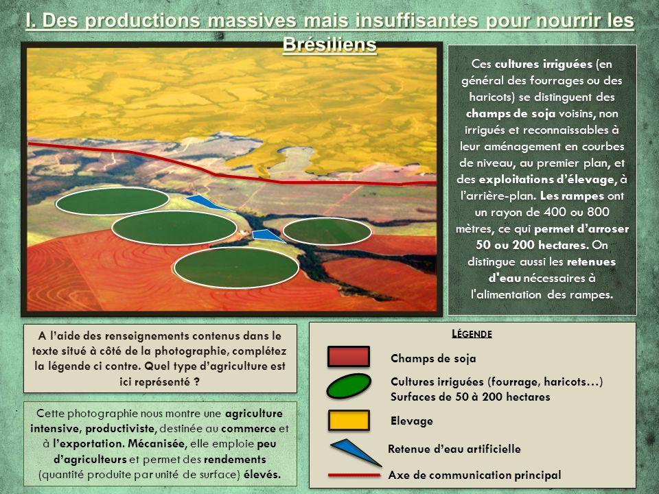 Ces cultures irriguées (en général des fourrages ou des haricots) se distinguent des champs de soja voisins, non irrigués et reconnaissables à leur am