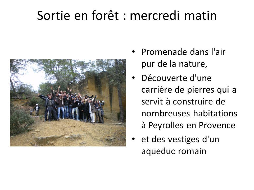 Sortie en forêt : mercredi matin Promenade dans l air pur de la nature, Découverte d une carrière de pierres qui a servit à construire de nombreuses habitations à Peyrolles en Provence et des vestiges d un aqueduc romain