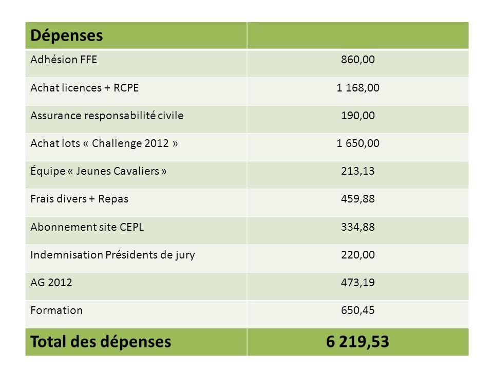 Dépenses Adhésion FFE860,00 Achat licences + RCPE1 168,00 Assurance responsabilité civile190,00 Achat lots « Challenge 2012 »1 650,00 Équipe « Jeunes