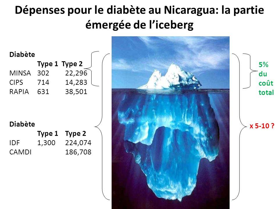 Diabète Type 1 Type 2 MINSA30222,296 CIPS71414,283 RAPIA63138,501 Diabète Type 1Type 2 IDF1,300224,074 CAMDI186,708 5% du coût total x 5-10 ? Dépenses