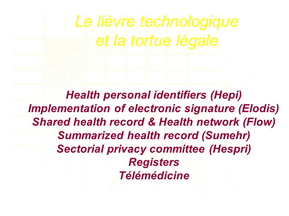 Health personal identifiers (Hepi) Implementation of electronic signature (Elodis) Shared health record & Health network (Flow) Summarized health record (Sumehr) Sectorial privacy committee (Hespri) Registers Télémédicine Le lièvre technologique et la tortue légale