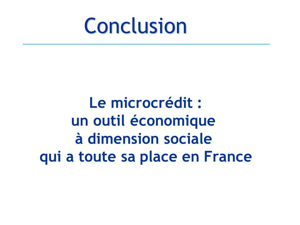 Conclusion Le microcrédit : un outil économique à dimension sociale qui a toute sa place en France