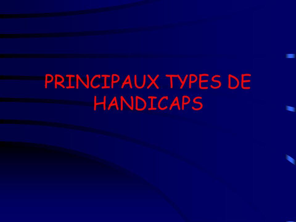 PRINCIPAUX TYPES DE HANDICAPS