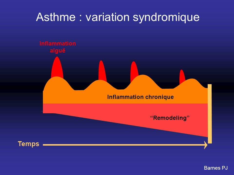Inflammation chronique Remodeling Inflammation aiguë Temps Asthme : variation syndromique Barnes PJ