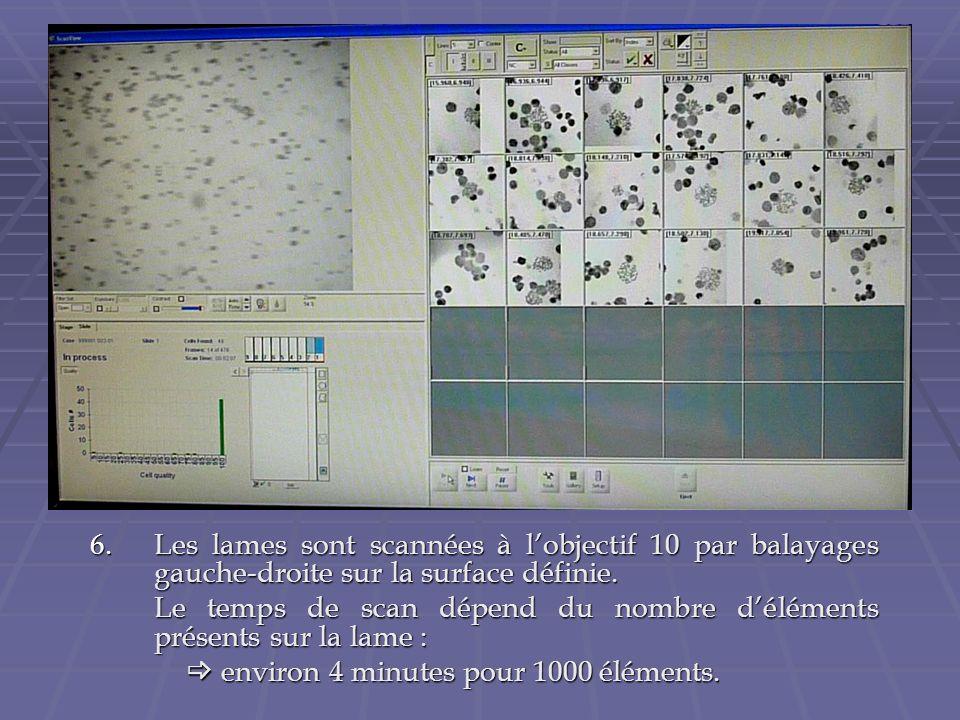 6.Les lames sont scannées à lobjectif 10 par balayages gauche-droite sur la surface définie. Le temps de scan dépend du nombre déléments présents sur