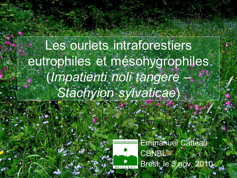 E.CATTEAU (CBNBL), 3/10/10 Les ourlets intraforestiers eutrophiles et mésohygrophiles (Impatienti noli tangere – Stachyion sylvaticae) Emmanuel Cattea