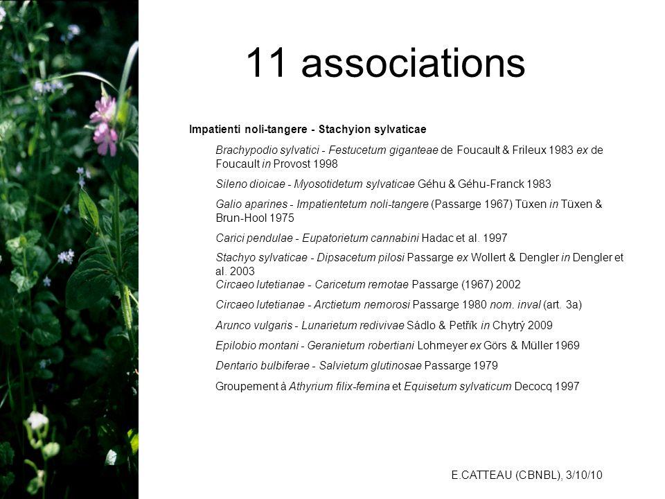 E.CATTEAU (CBNBL), 3/10/10 11 associations Impatienti noli-tangere - Stachyion sylvaticae Brachypodio sylvatici - Festucetum giganteae de Foucault & F