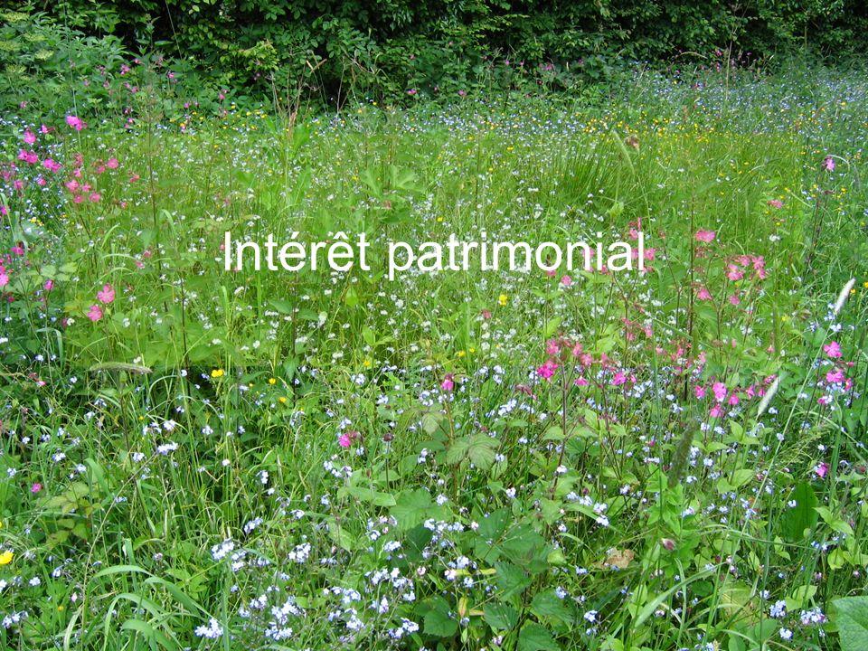 E.CATTEAU (CBNBL), 3/10/10 Intérêt patrimonial