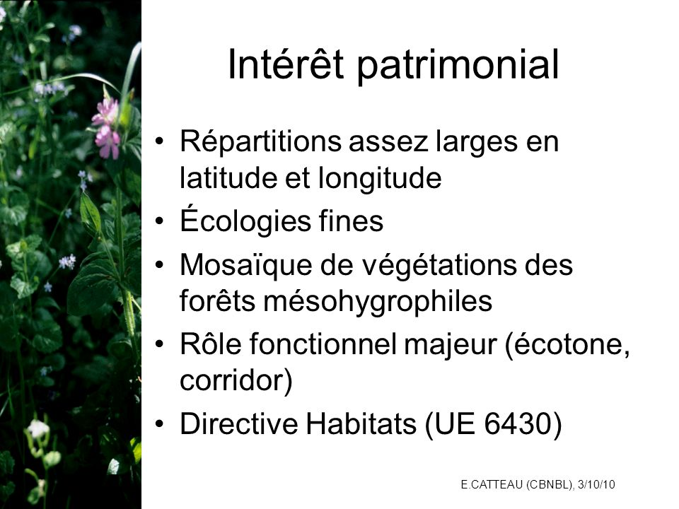E.CATTEAU (CBNBL), 3/10/10 Intérêt patrimonial Répartitions assez larges en latitude et longitude Écologies fines Mosaïque de végétations des forêts m