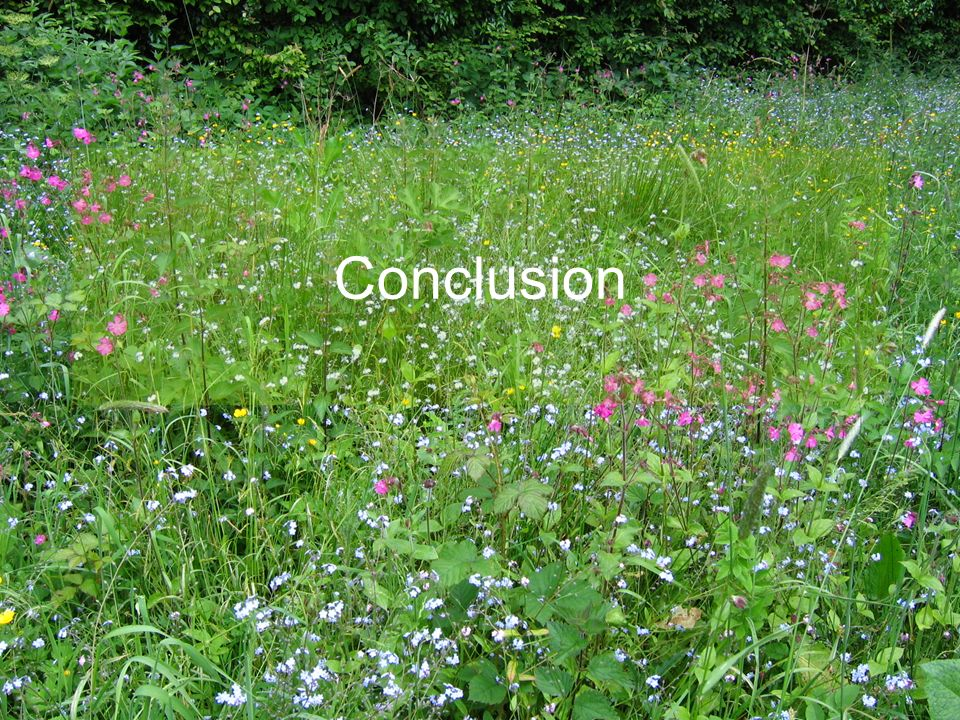 E.CATTEAU (CBNBL), 3/10/10 Conclusion