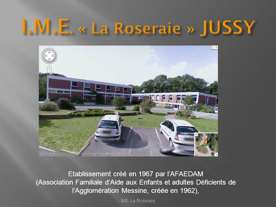 Etablissement créé en 1967 par lAFAEDAM (Association Familiale dAide aux Enfants et adultes Déficients de lAgglomération Messine, créée en 1962), IME