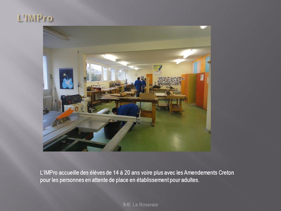 IME La Roseraie LIMPro accueille des élèves de 14 à 20 ans voire plus avec les Amendements Creton pour les personnes en attente de place en établissem