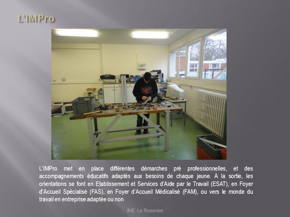 IME La Roseraie LIMPro met en place différentes démarches pré professionnelles, et des accompagnements éducatifs adaptés aux besoins de chaque jeune.