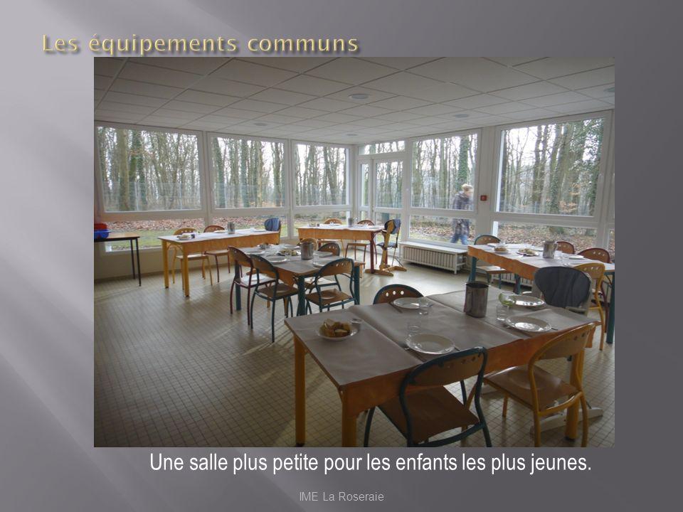 IME La Roseraie Une salle plus petite pour les enfants les plus jeunes.