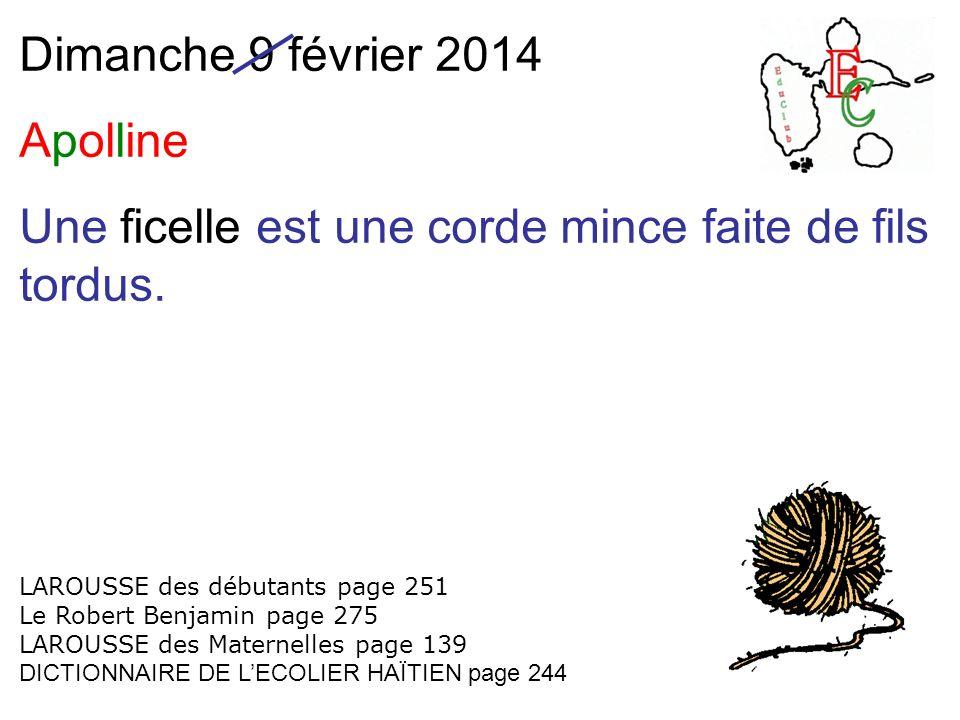 Dimanche 9 février 2014 Apolline Une ficelle est une corde mince faite de fils tordus.