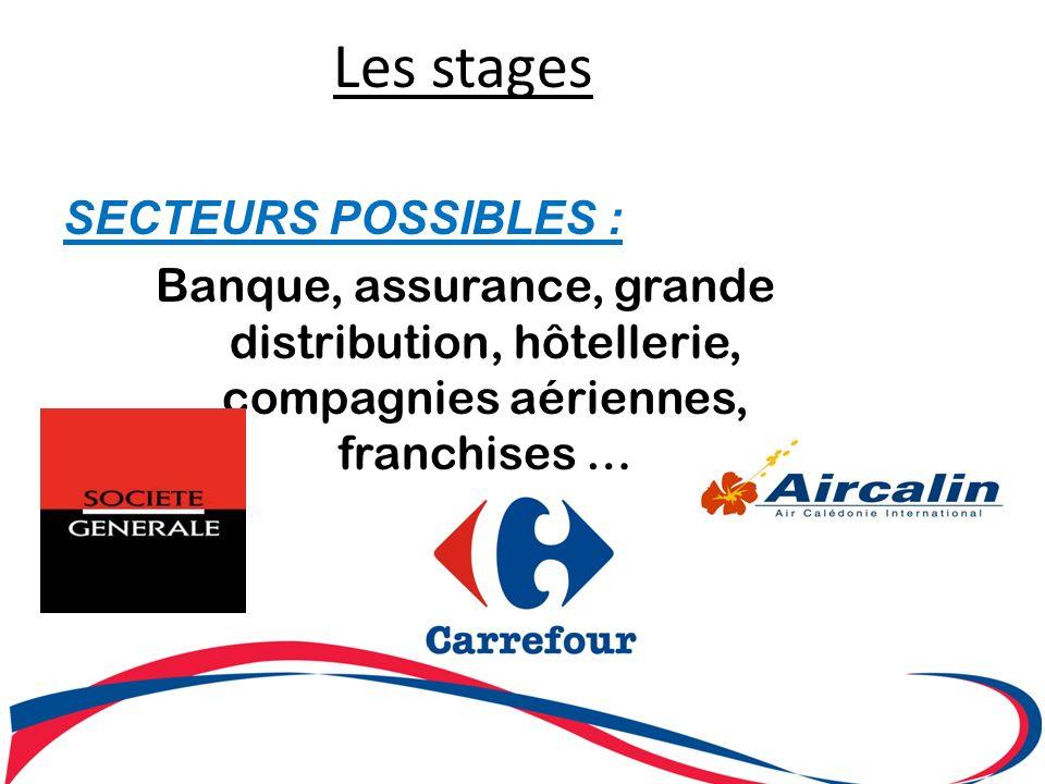Les stages SECTEURS POSSIBLES : Banque, assurance, grande distribution, hôtellerie, compagnies aériennes, franchises …