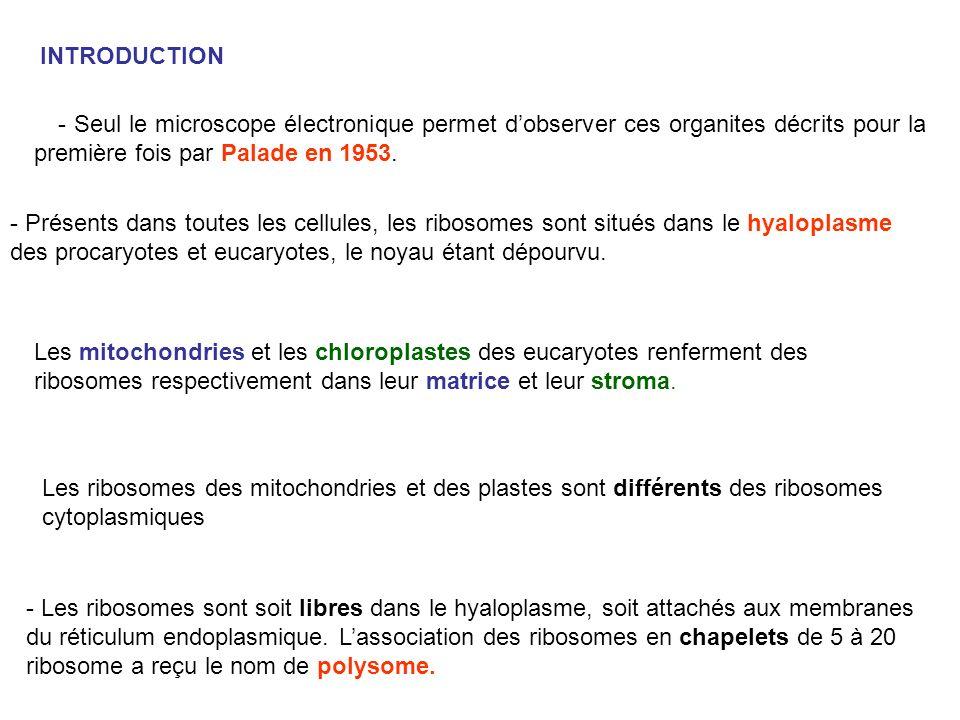 - Seul le microscope électronique permet dobserver ces organites décrits pour la première fois par Palade en 1953. INTRODUCTION - Présents dans toutes