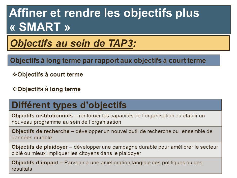 Objectifs au sein de TAP3: Objectifs institutionnels – renforcer les capacités de lorganisation ou établir un nouveau programme au sein de lorganisati